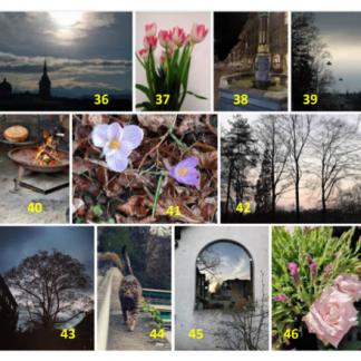 Photos 36-46